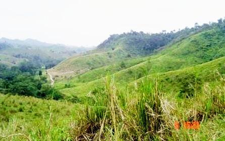 Farmland in El Carmen, Ecuador.
