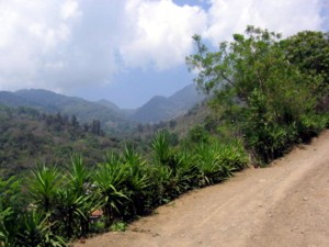 The mountain road on Union road in Honduras.