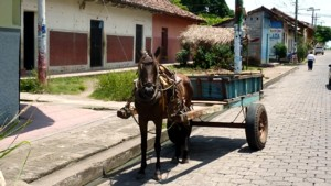 A donkey cart on the Coast of Nicaragua.