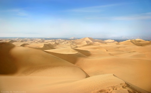 The desert dunes at Peru's Huacachina oasis.
