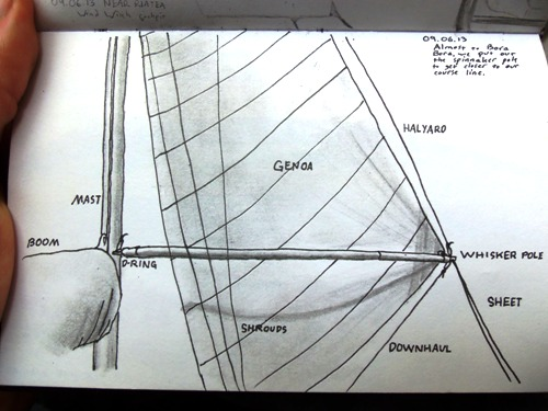 Diagram of a whisker pole
