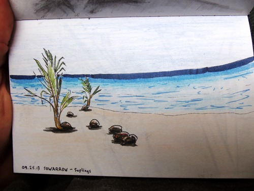 Travel sketch of Suwarrow, Cook Islands