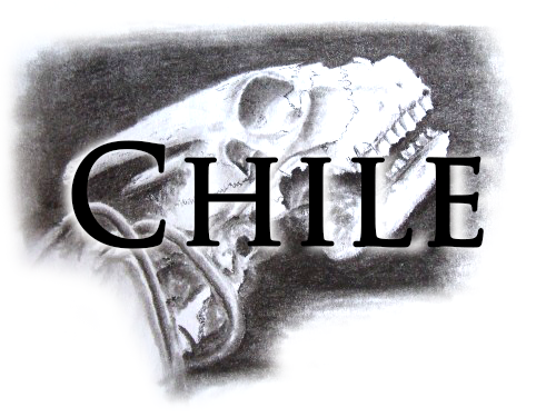 travel-drawing-from-chile
