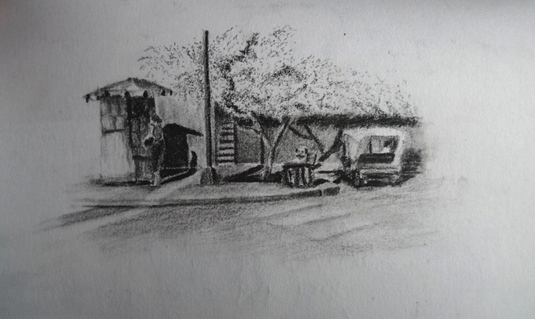 Pucallpa, Peru Drawing
