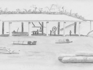 Amazon sawmill drawing in Brazil