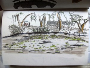 A sketch of a lagoon in Medellin, Colombia
